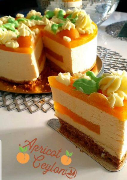 עוגת מוס גבינה עם משמש במילוי משמש וציפוי משמש