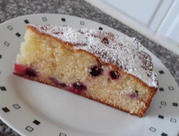 עוגה בחושה חלבית, בתוספת פירות יער_מתכון של תהילה גיל