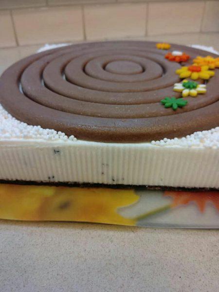 עוגת גבינה … תחתית מרציפן שוקולד_מתכון של שלומית שחר