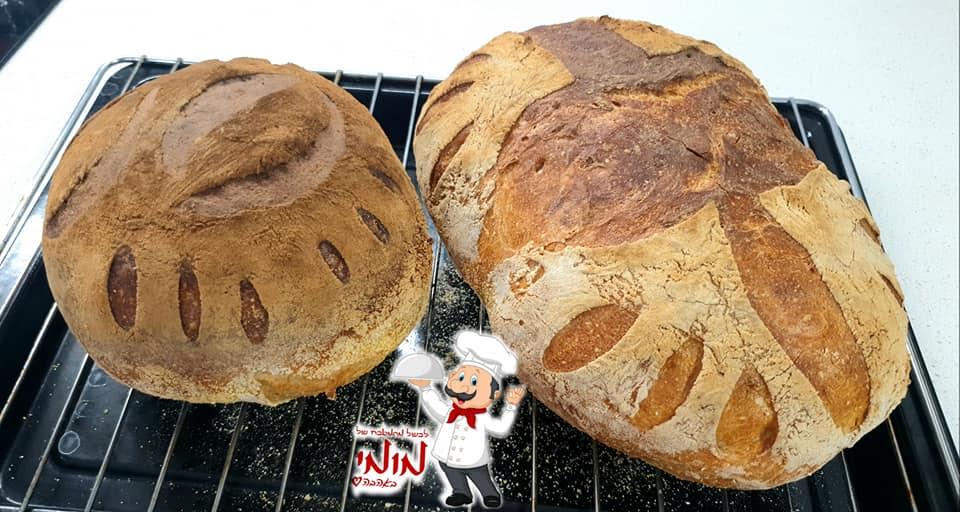 מתכון כתוב + סרטון להכנת לחם של בית פריך וטעים🔥_מתכון של טלי כהן שטרלינג – מאסטר מתכונים